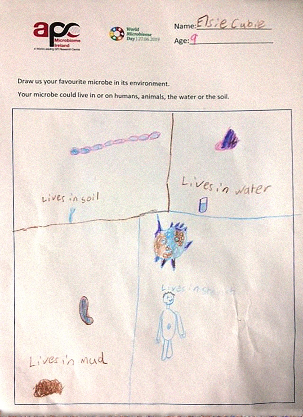 WMD Drawing 10-winner – 1st place senior kid