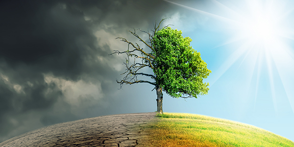 how climate change affects nature